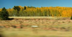 4K POV moving by mountain hill with clusters of orange and gold aspen trees - stock footage