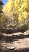 4x4 recreation off road mountain trail ride autumn vertical HD - stock footage