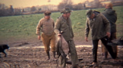 1973: Geese hunters loading up the kill into the back of a truck. - stock footage