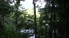 River flow through Gunung Leuser National Park Stock Footage