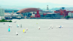 Sailing Boats in the Bay . Tilt Shift Timelapse. - stock footage