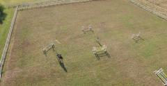 Equestrian sport aerial view Stock Footage