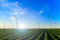 Radial blurred image. Windmills at sunset at a field of crops in Eemshaven, T - stock photo