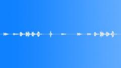 Grass warbler 6 - sound effect