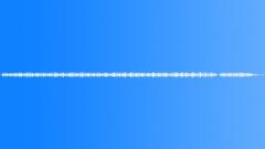 Grass warbler 3 Sound Effect