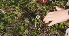 Little Girl's Hand Close Up Girl is Digging The Ground with Bottle Cap Girl Has Stock Footage