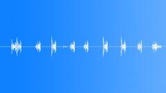 Eurasian skylark 5 Sound Effect