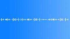 Eurasian skylark - sound effect