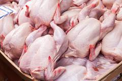 Meat of poultry ready to sale at the farmers market - stock photo