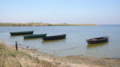 Ukraine - the delta of the Dnieper River - fishing boats tethered by a shore Stock Footage