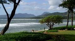 Islander on the Beach, Kauai, Hawaii Stock Footage