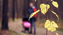 Walk with the child in autumn forest - stock footage