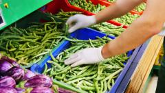 Supermarket beans in pods Stock Footage