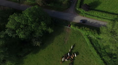 4K Aerial flight above forest fields & farm buildings in the English countryside - stock footage