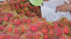 Rambutan tropical fruit at market,Kuala Lumpur,Malaysia Stock Footage
