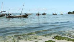 Traditional wooden dhows - Zanzibar island Stock Footage