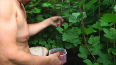 Man rips red
