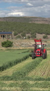 Agriculture wheet harvest rural farm tractor vertical HD Stock Footage