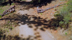 An aerial shot over a romantic couple hiking through a forest. Stock Footage