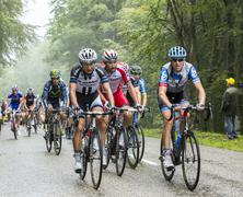 Stock Photo of The Peloton in a Misty Day - Tour de France 2014