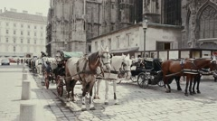 Horse carriage waiting in Vienna Stock Footage