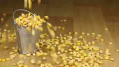 Fall into a bucket of corn grains and on wooden floor Stock Footage
