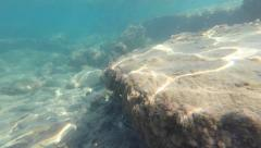 Rocky sea bed - stock footage
