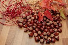 Chestnuts and autumn decoration. Stock Photos