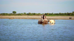Burmese local people crossing the Irrawaddy river shoal driving wooden cart Stock Footage