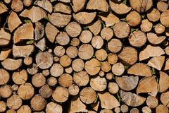 Log Pile Stock Photos