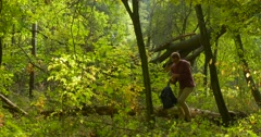Man Backpacker Has Stood Up From The Log Fallen Tree in Forest Put the Backpack Stock Footage