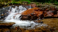 Cascade in tropical forest Stock Footage