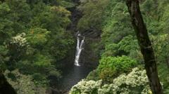 lower puahokamoa falls - stock footage