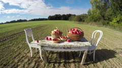 Agriculture harvest concept. Apple baskets on old table on  field. Timelapse 4K - stock footage