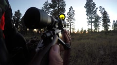 A deer hunter walks through the green woods with rifle Stock Footage