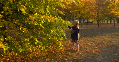 Little Girl With Fair Braid Girl in Beret And Jacket is Standing at the Tree Stock Footage