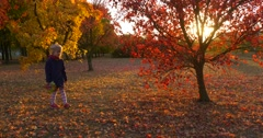 Little Girl in Beret And Blue Jacket is Standing at the Tree with Red Leaves Stock Footage