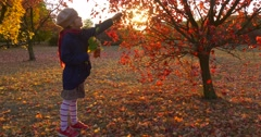 Little Girl in Beret And Blue Jacket And Red Scarf is Picking the Red Leaves Stock Footage