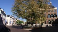 LEEUWARDEN Raadhuisplein ancient city square with Wilhelmina Tree Stock Footage