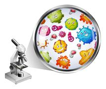 Microscope and zoom picture of bacteria Stock Illustration