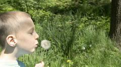 Boy blowing dandelion seeds Stock Footage