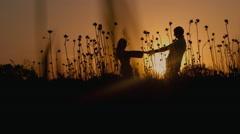 Loving couple at sunset. Concept: romance, love, honeymoon Stock Footage