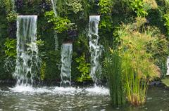 Waterfall with papyrus - stock photo