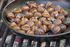 chestnuts roasting on an open fire - stock photo