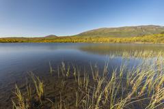 Vuolio Njahkajavri lake Abisko National Park Norrbotten Lapland Sweden Europe - stock photo