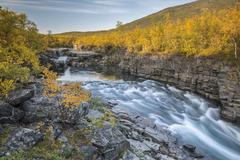 Autumnal Abisko canyon Abiskojokk river Abiskojokk Abisko National Park - stock photo