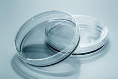 blank petri dish isolated on blue - stock photo