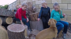 Stock Video Footage of three children 5-9 years laugh and talk. Three happy children sit on logs.