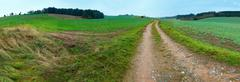 Vanishing dirty road through meadow at dawn. Stock Photos