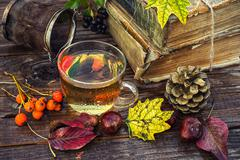 Autumn tea party - stock photo